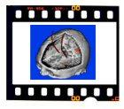 film_cell.jpg