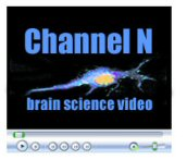 Channel_N_logo.jpg