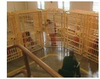 prison_cage.jpg