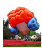 brain_hot_air_balloon.jpg