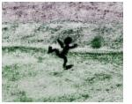 experimental_psychoses_image.jpg